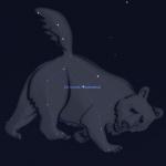 Почему ковш называют Большой Медведицей?