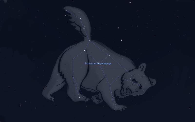 Почему большая медведица называется большой медведицей