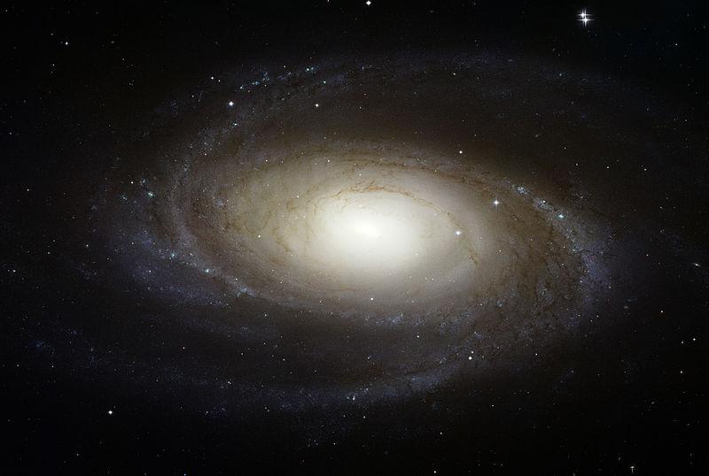 Галактика Бодэ (М81)